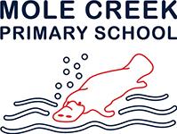 Mole Creek Primary School